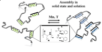 Multisegmented Hybrid Polymer Based on Oligo-Amino Acids (Reprinted with permission from J. Freudenberg et al., Macromolecules (2019). Copyright 2019 American Chemical Society.
